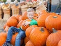 Things to do in October in Myrtle Beach