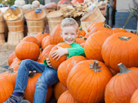 Things to Do in Myrtle Beach in October 2019