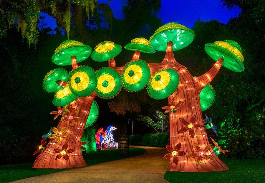 Brookgreen Gardens Festival of Lights