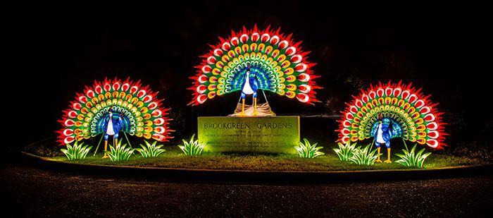 Brookgreen Gardens Festival of Lights 2018